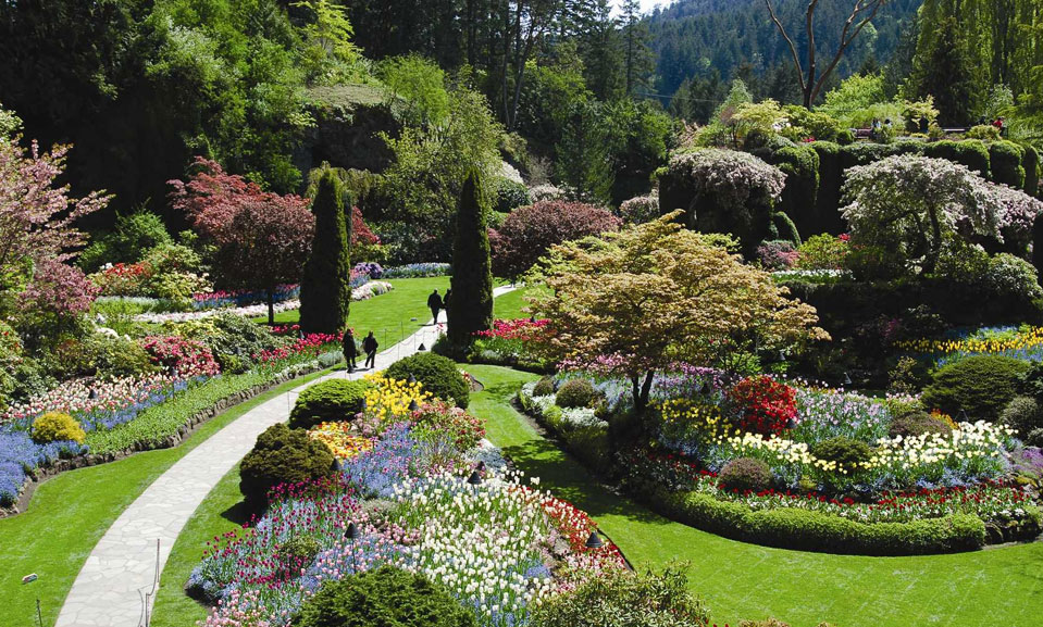 Butchart gardens sidney bc garden ftempo - Butchart gardens tour from victoria ...